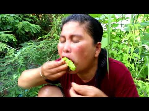 Survival Skills - cooking shrimp - grilled shrimp salad eating delicious