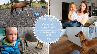 Erster Sturz vom Pferd |Kräuterfaltenbrot |Thermomix TM6 |VLOG |Kathis Daily Life