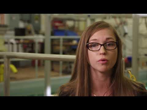 NRL: Meredith Hutchinson, Ph.D., Optical Engineer - 07