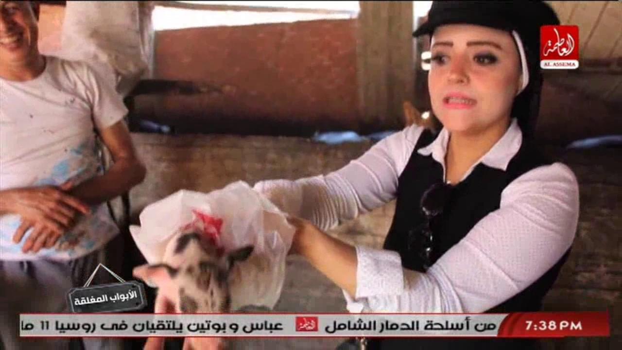 الابواب المغلقة مع ناريمان زين العابدين وحلقة خطير عن لحوم الخنازير والضحية الشعب الغلبان