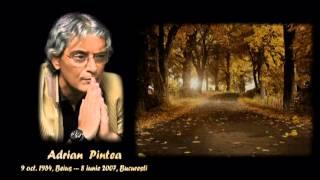 Remember Adrian Pintea