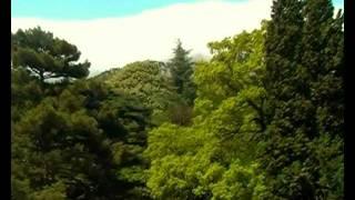 Воронцовский( Алупкинский) парк.  Прогулка.(весна, май, парк, Крым, Алупка, парк, прогулка., 2011-05-23T08:23:41.000Z)