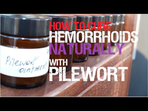 How to cure hemorrhoids naturally with pilewort | Herbal Medicine