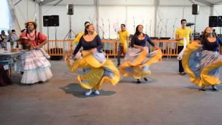 TEROR MULTICULTURAL, Baile de la burra, SENTIR VENEZOLANO