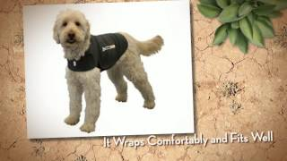 Thundershirt Dog Anxiety Treatment Wrap - Best Pet Supplies Review