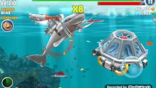 hungry shark evelition hileli oynadım 1# bölüm