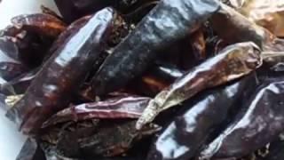 ОСТРЫЙ ПЕРЕЦ  ПОСЕВ  Видеоурок Ольги Черновой  1 февраля 2017 г