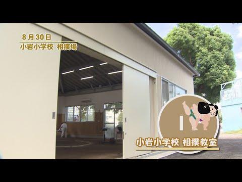 小岩小学校 相撲教室