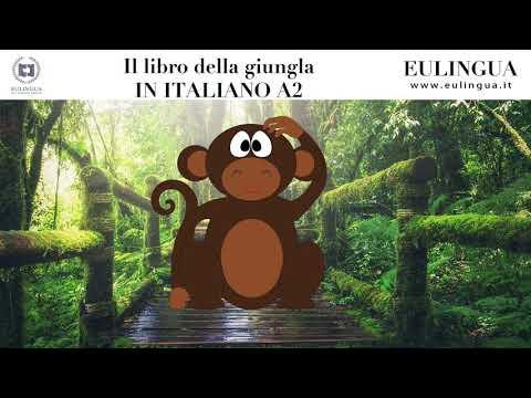il-libro-della-giungla-in-italiano-a2---dettato-per-imparare-l'italiano---ft-danny-nicolosi