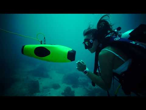 The Spectacular Indonesia ocean Witnessed by FIFISH P3 Underwater Drone