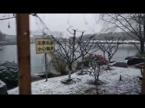 Snow fall in Shanghai University of Political Science and Law 2018 (Part 1)
