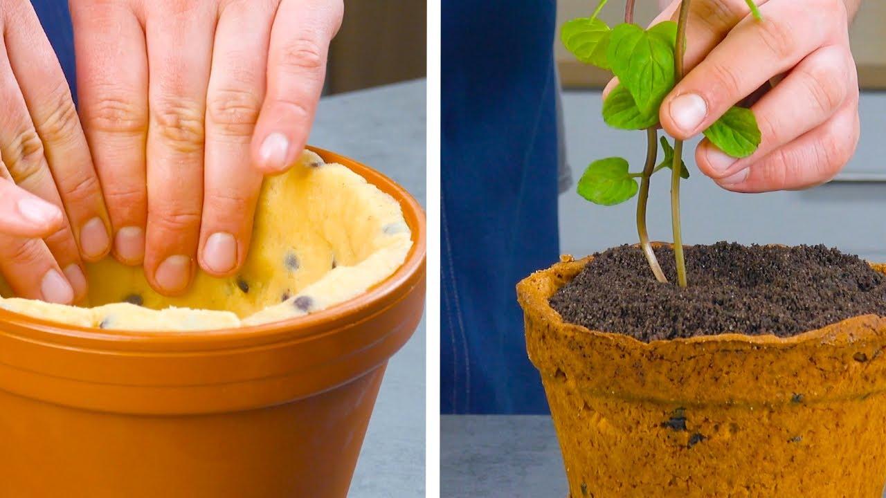 Line A Flower Pot With Cookie Dough   Creative Idea For Baking Buffs!