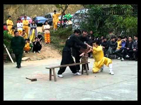 Tong ket y vo bao lam duong 2011.avi