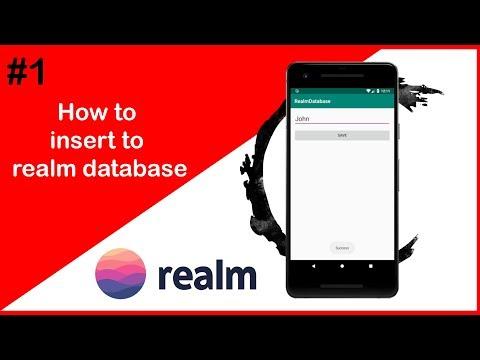 Android Database #1 | Realm Database Insert Data