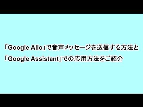 「Google Allo」で音声メッセージを送信する方法と「Google Assistant」での応用方法をご紹介