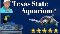 Texas State Aquarium IS IT WORTH IT?  - CLICK TO FIND OUT