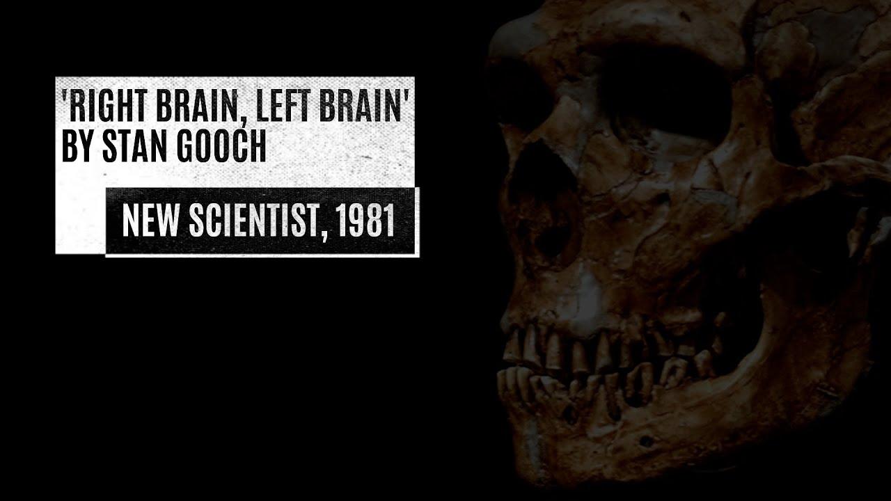 Right Brain, Left Brain by Stan Gooch, New Scientist 1981