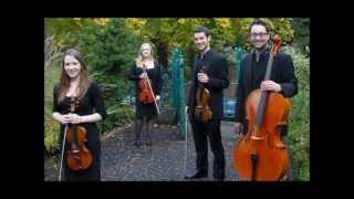 Didsbury String Quartet: Hoppípolla (Sigur Ros)