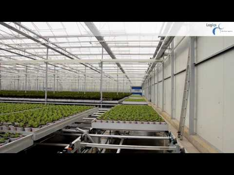 Greenhouse Automation - Automatic Transport Lines