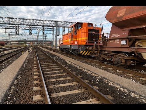 Open Rails/MSTS - Trafficatissimo scalo merci a Porto Marghera