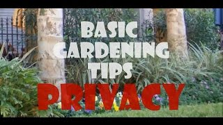 HOW TO IMPROVE PRIVACY IN YOUR GARDEN