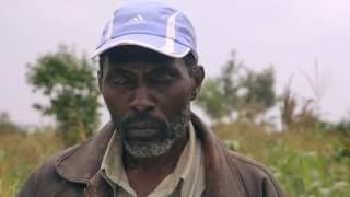 Shamba Shape Up Sn 06 - Ep 10 Conservation Agriculture, Mangoes, Greenhouses (English)