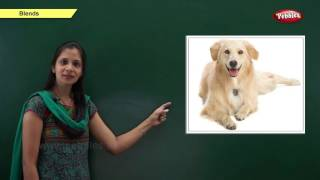 Phonics Chapter 6 : The Vowel Sounds   Learn Phonics For Kids   Phonics Classroom Teaching Lessons