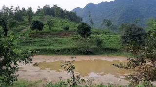 Bán Trang Trại Sinh Thái Nghỉ Dưỡng Kết Hợp Dịch Vụ Du Lịch 50000m2, 300m2 thổ cư,giá