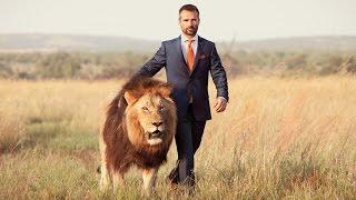 The Lion Whisperer Kevin Richardson