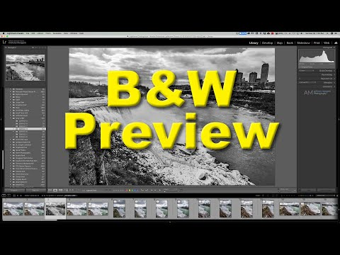2-minute-lightroom-tips---preview-b&w