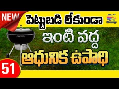 Earn Money With No Investment From Home Telugu Ladies Business