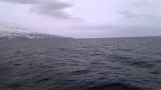 Курильские Острова - как я провел лето Видео №4 - Первый выход в море(Начались трудовые будни)), 2015-07-20T23:54:11.000Z)