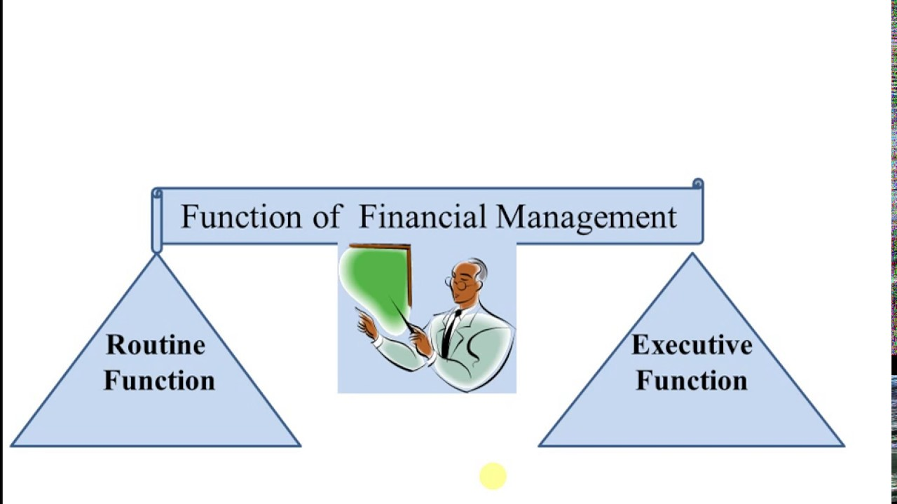 functions of financial management essay Financial management, the field is frequently identified as a key component within the wider systems of public resources management and policy formulation, alongside development programming and personnel and property management systems.