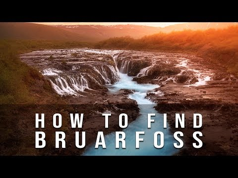 How to find BRUARFOSS  [ 2018-2019 ]