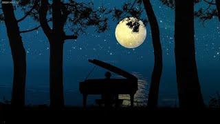 아름다운 피아노음악 모음 🎵 마음이 차분해지는 힐링음악 | 수면유도음악 | 잠잘때듣는음악 | 수면명상음악 | 휴식할때 듣는 음악 (Night Piano)
