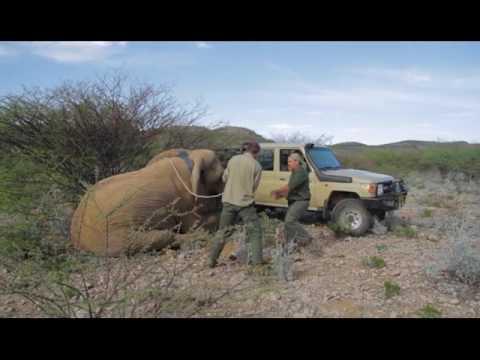 Wild Jobs Namibia S02 E01