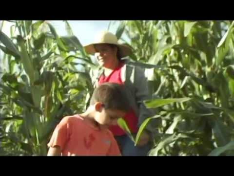 Tava - Paraguay tierra adentro