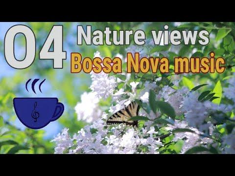Relaxing Bossa nova Music & Nature Views Vol 1