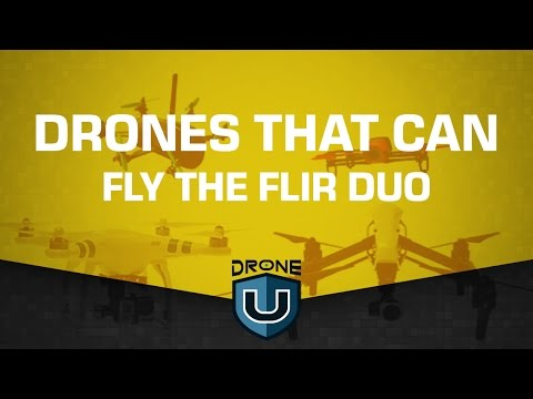 Drones that can fly the Flir Duo