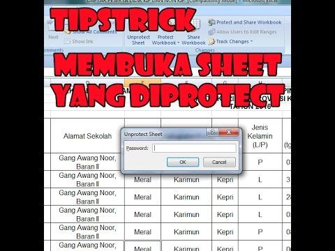 membuka-sheet-yang-di-protect-(ms.excel)