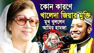 কোন কারণে মুক্তি পেল খালেদা জিয়া ! মুখ খুললেন আমির হামজা  amir hazma bangla waz 2020  waztv