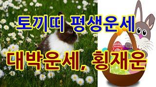 토끼띠운세 계묘생 재물운 결혼운 건강운 로또 1등예상번호