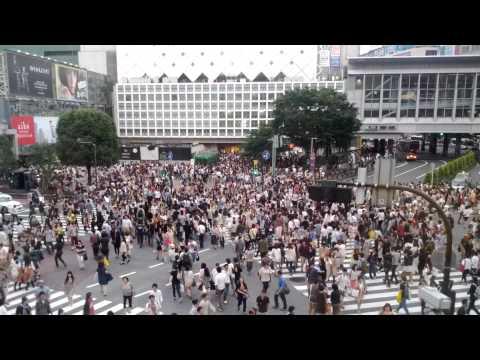 Shibuya Crossing, Tokyo (view from Starbucks)