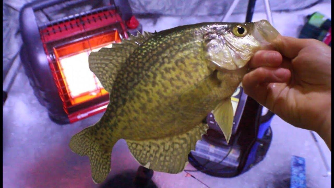 Night Time Crappie Fishing In Minnesota Youtube