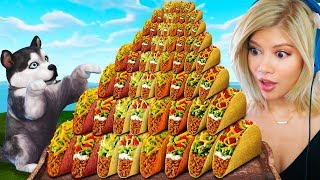 Can A Puppy Survive On Only TACOS?