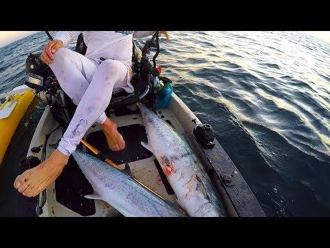 OFFSHORE KAYAK FISHING,  DANIA BEACH  KINGS ON FIRE!!