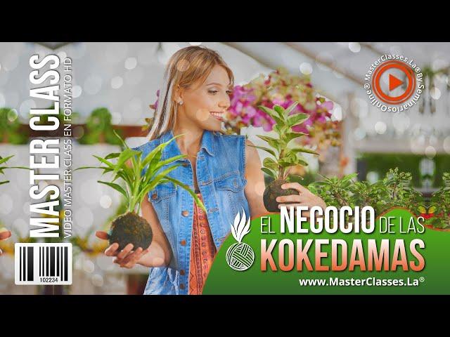 El negocio de las kokedamas - Aprende y crea pequeños espacios vivos.