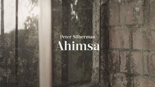 """Peter Silberman - Impermanence at The Glass House   Part Five: """"Ahimsa"""""""