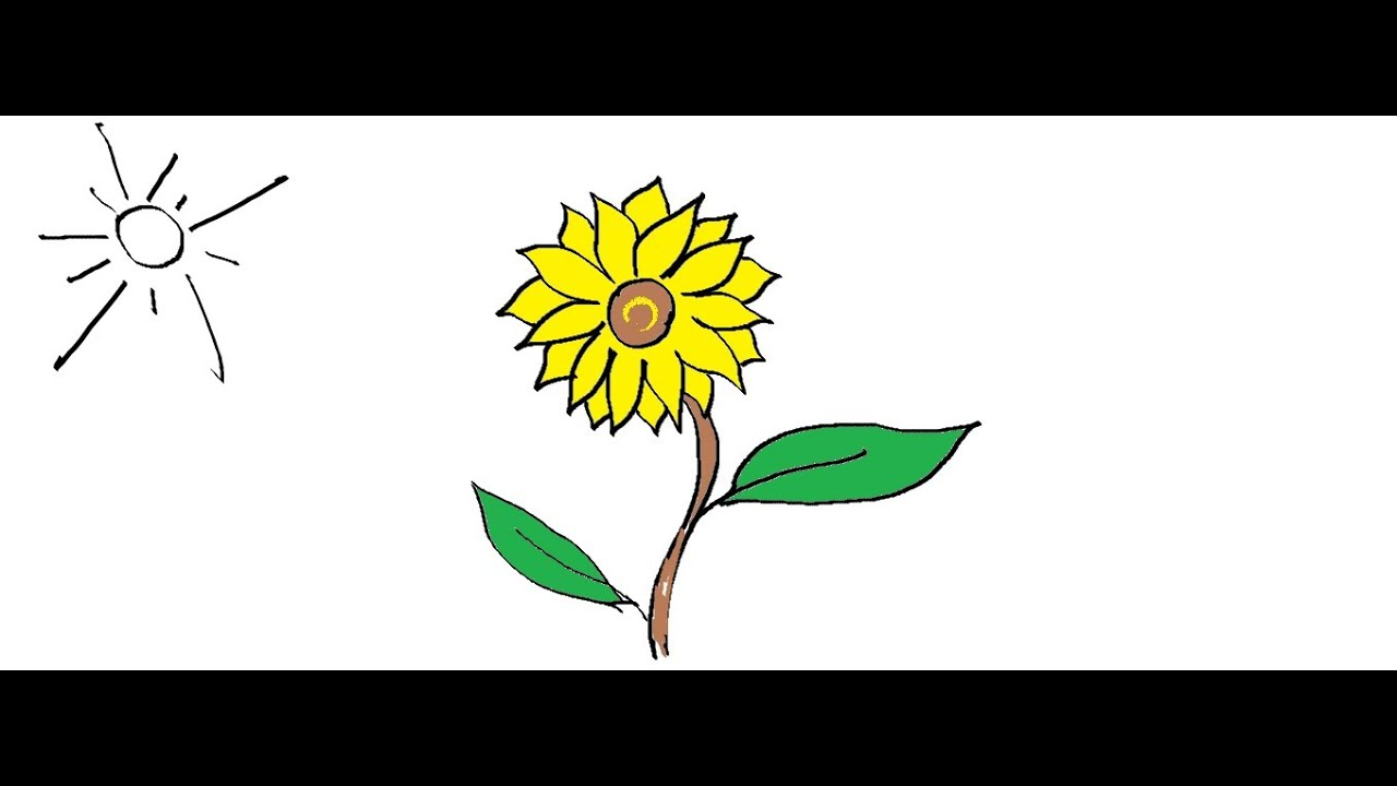 Easy Kids Drawing Lessons :How to Draw a flower- Sunflower ...