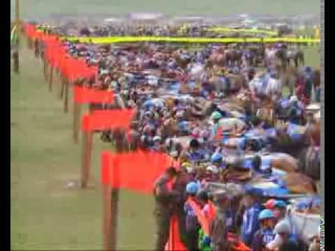 4249 horse race in mongolia 2013
